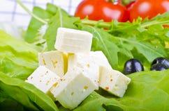 αίγα s τυριών Στοκ φωτογραφία με δικαίωμα ελεύθερης χρήσης