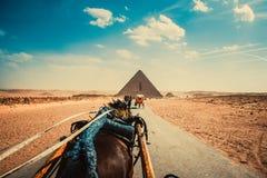 Αίγυπτος Στοκ Εικόνα