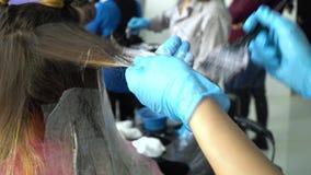 Αίθουσα ομορφιάς barbra Ο στιλίστας χρωματίζει την τρίχα του πελάτη του Ο μαθητής βοηθά τις συμπεριφορές στιλίστων στιλίστων ένας απόθεμα βίντεο