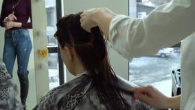 Αίθουσα ομορφιάς barbra Στιλίστας που κτενίζει την υγρή τρίχα του πελάτη Ένα νέο κορίτσι κάθεται σε μια καρέκλα μπροστά από έναν  φιλμ μικρού μήκους