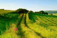 αίσθημα αγροτικός Στοκ εικόνες με δικαίωμα ελεύθερης χρήσης