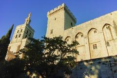 Αβινιόν des palais papes Στοκ Εικόνες