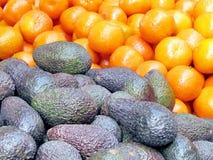 Αβοκάντο και tangerines του Τελ Αβίβ σε bazaar το 2013 Στοκ εικόνες με δικαίωμα ελεύθερης χρήσης