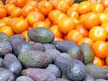 Αβοκάντο και tangerines 2013 του Τελ Αβίβ Στοκ εικόνα με δικαίωμα ελεύθερης χρήσης