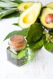 Αβοκάντο με τα φύλλα και το βάζο του πράσινου πετρελαίου αβοκάντο Στοκ Εικόνες