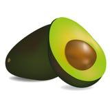 Αβοκάντο φρούτων χαριτωμένα φυτικά ρεαλιστικά τρόφιμα απεικόνισης έννοιας διανυσματικά Στοκ Φωτογραφία