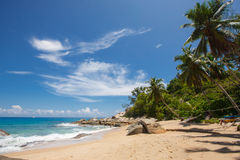 Αβλαβής τροπική παραλία στη Σρι Λάνκα Στοκ φωτογραφία με δικαίωμα ελεύθερης χρήσης