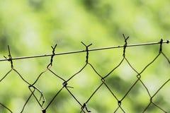 Αβλαβής φράκτης Στοκ εικόνες με δικαίωμα ελεύθερης χρήσης