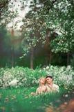 Αγάπη άνοιξη Στοκ φωτογραφίες με δικαίωμα ελεύθερης χρήσης