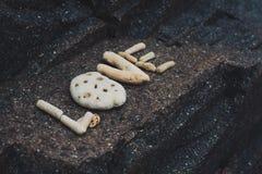 Αγάπη λέξης φιαγμένη από κοχύλια που συλλέγονται σε μια πέτρα γρανίτη Στοκ Εικόνα