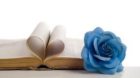 αγάπη Βίβλων μου Στοκ εικόνες με δικαίωμα ελεύθερης χρήσης