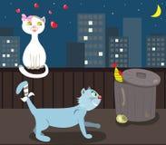 αγάπη γατών διανυσματική απεικόνιση