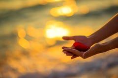 Αγάπη για την ημέρα του βαλεντίνου - δύο κόκκινες καρδιές κρέμασαν στο σχοινί μαζί με το ηλιοβασίλεμα Στοκ Εικόνες