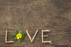 Αγάπη και καρδιά-διαμορφωμένα φύλλα Στοκ φωτογραφία με δικαίωμα ελεύθερης χρήσης