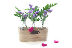 αγάπη λουλουδιών στοκ φωτογραφίες με δικαίωμα ελεύθερης χρήσης