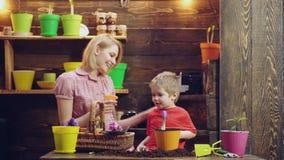Αγάπη μητέρας για το γιο της Η μητέρα διδάσκει το γιο της στην κηπουρική Η μητέρα και ο γιος φυτεύουν τα λουλούδια στα δοχεία r απόθεμα βίντεο