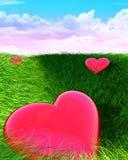 αγάπη πεδίων Στοκ εικόνα με δικαίωμα ελεύθερης χρήσης