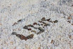 Αγάπη στη μαρμάρινη παραλία Στοκ Εικόνες