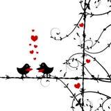 αγάπη φιλήματος κλάδων πο&up Στοκ Φωτογραφίες