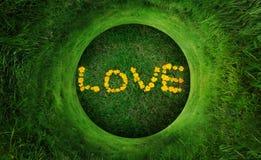 αγάπη φυσική στοκ φωτογραφίες