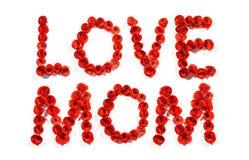 Αγάπη mom Στοκ φωτογραφία με δικαίωμα ελεύθερης χρήσης