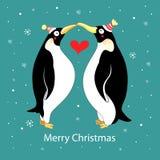 αγάπη penguins Στοκ Εικόνα
