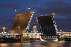 Αγία Πετρούπολη Γραφείο Curiosities στην ευθυγράμμιση-διαζευγμένη γέφυρα παλατιών Στοκ εικόνες με δικαίωμα ελεύθερης χρήσης
