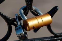 Αγαπήστε τα κλειδώματα Στοκ Εικόνα