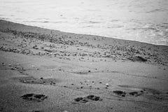 Αγαπημένη θάλασσα Στοκ φωτογραφία με δικαίωμα ελεύθερης χρήσης