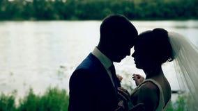 Αγαπώντας ζεύγος που κρατά κάθε κοντά στη λίμνη απόθεμα βίντεο