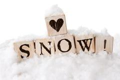 Αγαπώντας χιόνι Στοκ Εικόνες