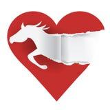 Αγαπώ τα άλογα Στοκ φωτογραφία με δικαίωμα ελεύθερης χρήσης