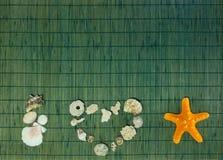 Αγαπώ την επιγραφή κοχυλιών θάλασσας με το κενό πράσινο υπόβαθρο μπαμπού Στοκ εικόνες με δικαίωμα ελεύθερης χρήσης