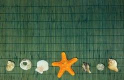 Αγαπώ την επιγραφή κοχυλιών θάλασσας με το κενό πράσινο υπόβαθρο μπαμπού Στοκ φωτογραφίες με δικαίωμα ελεύθερης χρήσης
