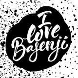 Αγαπώ το basenji Στοκ εικόνες με δικαίωμα ελεύθερης χρήσης