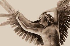 αγγελικός Στοκ φωτογραφίες με δικαίωμα ελεύθερης χρήσης