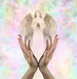 αγγελικό όραμα Στοκ φωτογραφίες με δικαίωμα ελεύθερης χρήσης