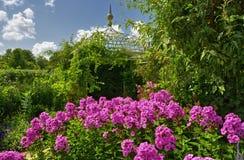 αγγλικός κήπος λουλο&upsi Στοκ Φωτογραφία
