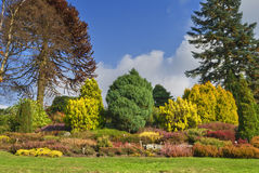 αγγλικός κήπος φθινοπώρου Στοκ Φωτογραφία