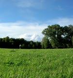 αγγλικός κήπος Στοκ εικόνες με δικαίωμα ελεύθερης χρήσης