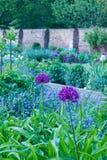 Αγγλικός περιτοιχισμένος χώρα κήπος με την όμορφη επιλογή των εγκαταστάσεων - εικόνα πορτρέτου στοκ εικόνα με δικαίωμα ελεύθερης χρήσης
