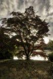 Αγγλικό φθινόπωρο δυτικό Σάσσεξ, Ηνωμένο Βασίλειο Στοκ φωτογραφίες με δικαίωμα ελεύθερης χρήσης