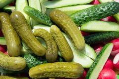Αγγούρια λαχανικών Στοκ Εικόνες