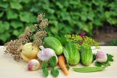 Ακόμα ζωή με τα φρέσκα λαχανικά. Στοκ Εικόνες