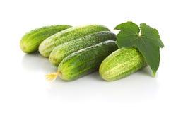 αγγούρια πράσινα Στοκ Φωτογραφία