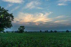Αγγλική επαρχία στο ηλιοβασίλεμα Στοκ Εικόνες