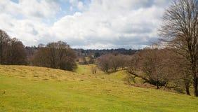 Αγγλική φύση Πάρκο στο χρόνο άνοιξη του Σάσσεξ Στοκ Εικόνα