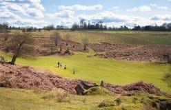 Αγγλική φύση Πάρκο στο χρόνο άνοιξη του Σάσσεξ Στοκ Εικόνες