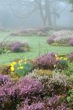 Αγγλικός κήπος ανοίξεων Στοκ εικόνες με δικαίωμα ελεύθερης χρήσης