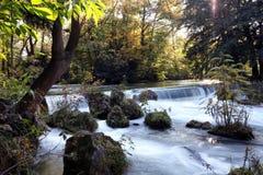 Αγγλικός κήπος στο Μόναχο στοκ εικόνες με δικαίωμα ελεύθερης χρήσης